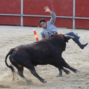 European Parliament rejects subsidies for bullfighting