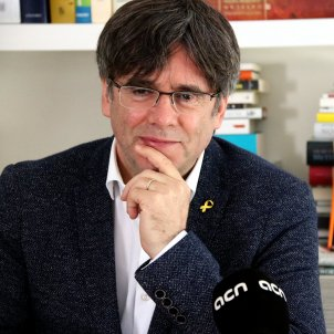 Puigdemont publishes censored Catalan parliamentary resolutions on monarchy