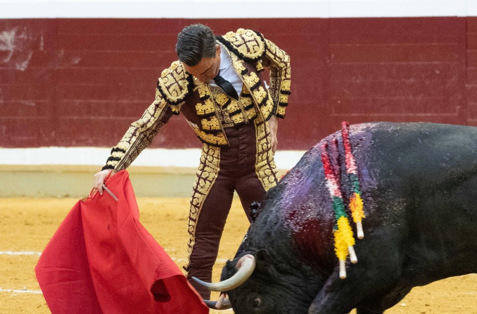 "Calling a bullfighter ""a murderer"" not justified by free speech, rules Spanish court"