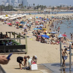 Check out the current conditions on Catalonia's beaches