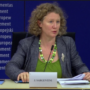 "MEP behind Hungary report: ""There are political prisoners in Spain"""