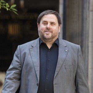 Spain's state solicitors study plan to accredit Junqueras as an MEP in Madrid