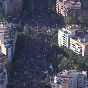 Videos: Saturday's huge Barcelona march seen from the air