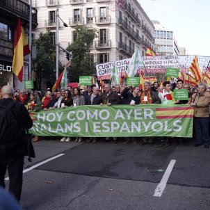 Far-right Vox, the star of Constitution Day march in Barcelona as others stay home
