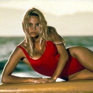 Pamela Anderson   Twitter