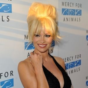 pamela anderson mercy for animals flickr