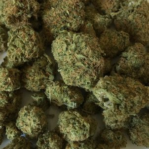 cannabis pixabay