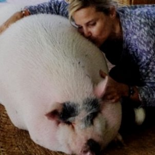 eugenia martinez irujo porc  instagram
