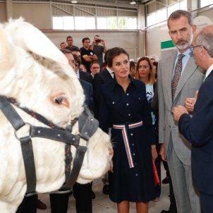 leticia i felip vaca  CASA REIAL