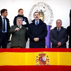 Rei Felip VI bandera espanya 2  EFE