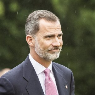 Rei Felip VI pluja Premis Princesa de Girona - Sergi Alcàzar