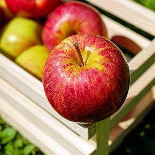 manzana - pixabay