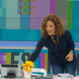melero groc ponsetia tv3 c