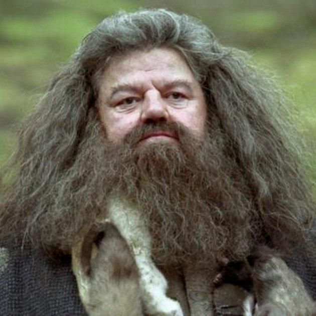 Berri Txarrak - Página 15 Hagrid-harry-potter_1_630x630