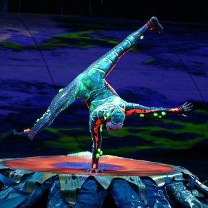 Cirque du Soleil-ACN