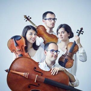 Cosmos Quartet 2