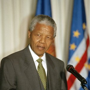 nelson mandela UN Photo Evan Schneider