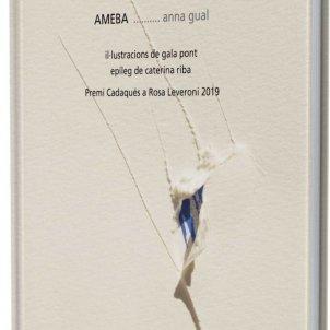 Ann aGual Ameba
