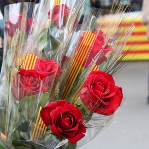 Roses Sant Jordi ACN