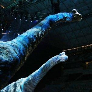 Dos diplodocus d'onze metres d'alçada al 'Caminant entre dinosaures'. Mar Vila ACN
