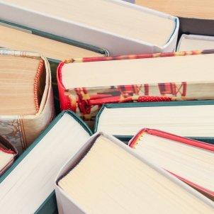 Llibres Llibre Pixabay
