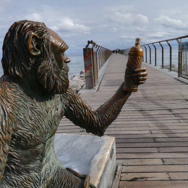 32 Escultura Anís del Mono, de Susana Ruiz, vora el pont del Petroli (Badalona)