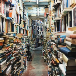 llibres pixabay