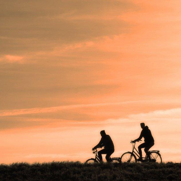 bicicletes pixabay