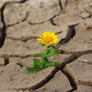 clima pixabay