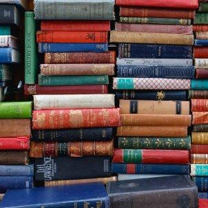 llibres unsplash