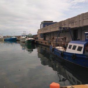 barques pesca cambrils coronavirus acn