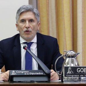 marlaska comissio congres coronavirus EFE