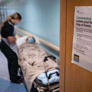 regne unit coronavirus efe