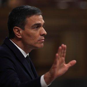 Pedro Sánchez ple Congrés - Efe