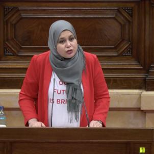 parlament racisme