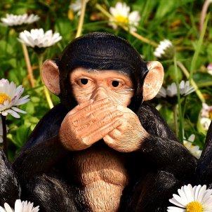 No escoltar, no parlar, no veure hi (Alexas Fotos)