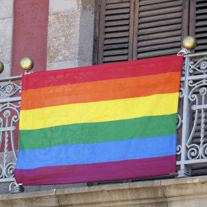 bandera lgtbi parlament acn