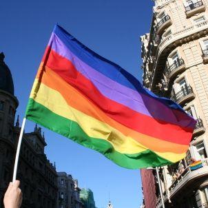 bandera gai