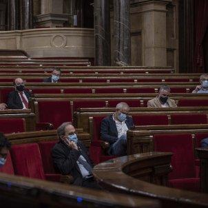 ple parlament monarquia - maria contreras coll