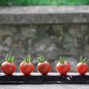 Tomates Unsplash