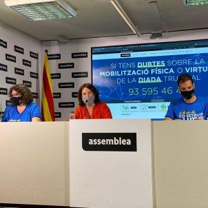 assemblea manifestacio diada 2020 coronavirus paluzie alsina - @assemblea