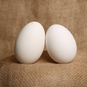 Huevos duros Pixabay