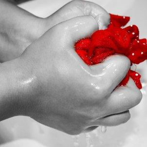 Rentar mans (Chroma Concepto Visual)