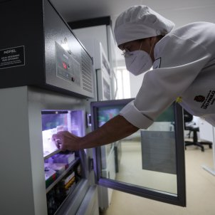 vacuna coronavirus brasil efe