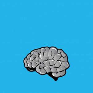 Cerebro gris