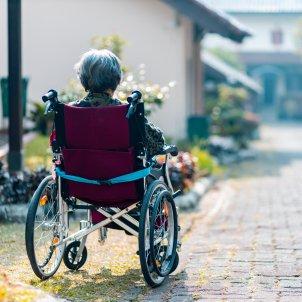Alzheimer recurs Unsplash  Steven HWG