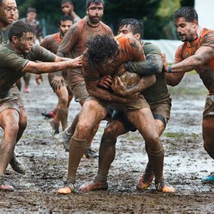 Rugby fang (Quino Al)