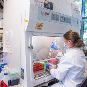 laboratoris Oxford coronavirus vacuna Astra Zeneca EFe