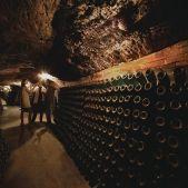 Cata de vins a la cava Sant Josep de les Caves Codorniu 24555 Lluís Carro