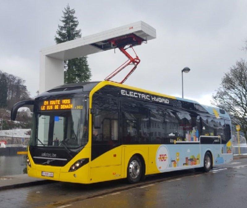 Metrobús 8 - AMB